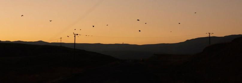10_045_TY_Kurdistan_005