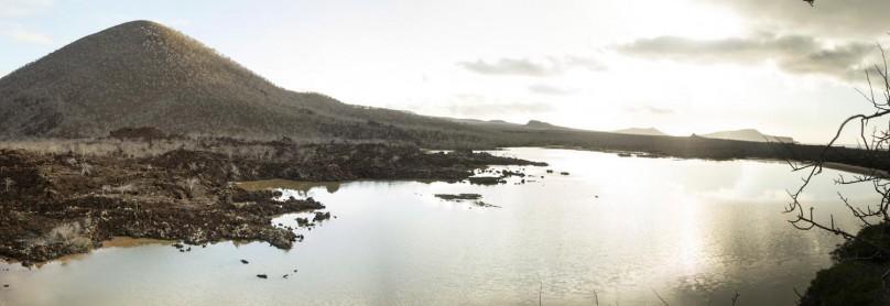 Galapagos_Floreana-Island_26