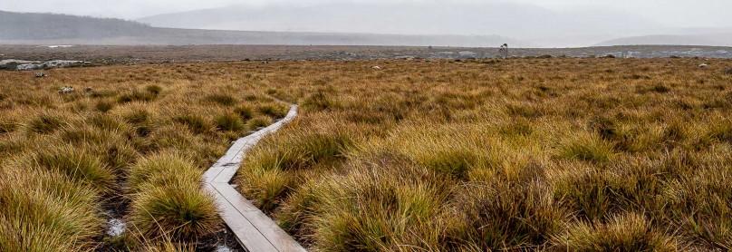ausralien-tasmanien-overland-track-freistilchaot-14