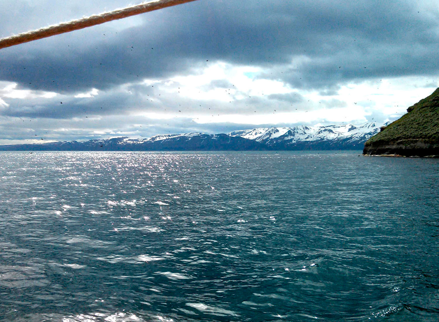 whale-watching-in-husavik-iceland_08