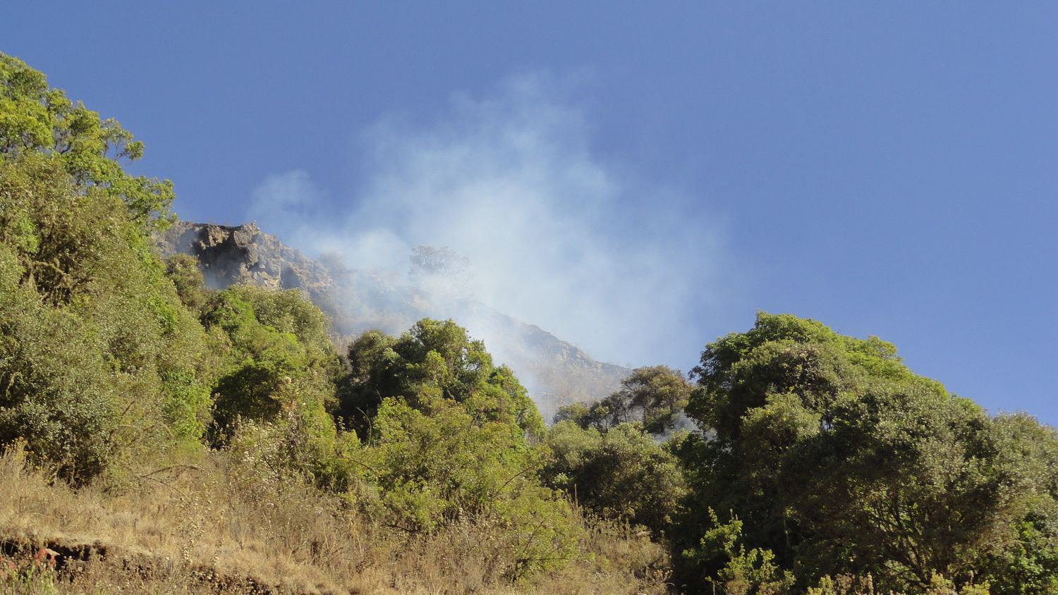 Waldbrand in den Simien Mountains